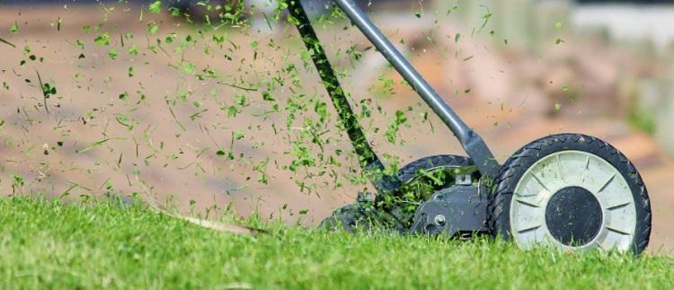 buying lawn aerator
