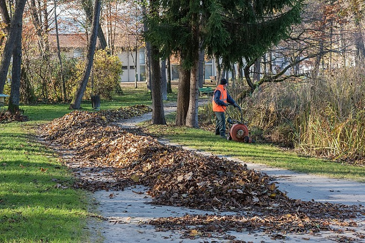 outdoor leaf blower