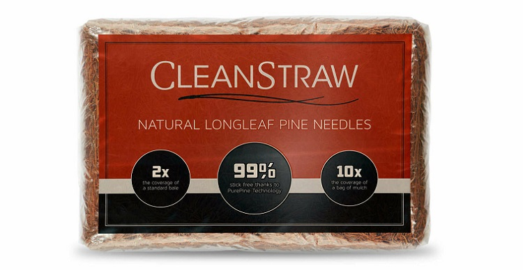 CleanStraw Natural Longleaf Pine Straw
