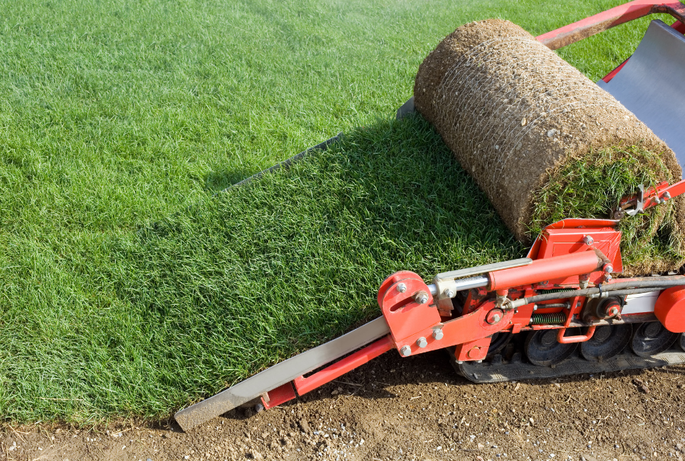 How to Cut Sod Guide