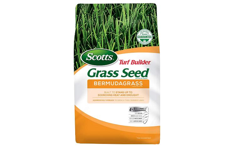 Scotts Bermudagrass Seed